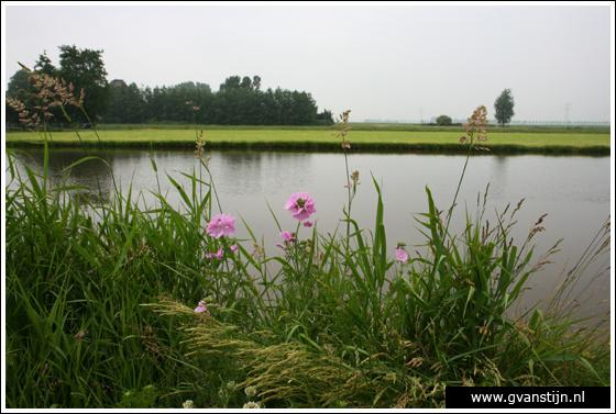 Coll2007-02 Bobeldijk N.H.  215_0310.jpg