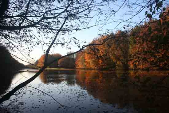 Herfsttinten-Bos Mooie weerspiegelingen in het water<br><br> 2150_Herfst_Amsterdamse_Bos_Bovenkerk_3005.jpg