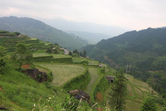 Datang Rijstterrassen op weg naar Rongjiang<br><br> 0740_1644.jpg