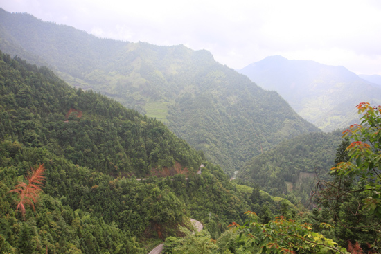 Longji Op weg naar Longji.<br>Over een smal en steil weggetje de bergen in bij Longji met een extra kleine bus<br><br> 1560_2195.jpg