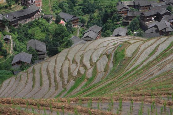Longji Hoe je het ook bekijkt: geweldig<br><br> 1650_2278.jpg