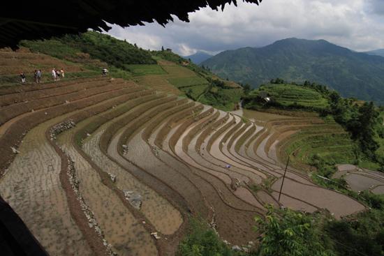 Longji Rijstterrassen van Longji bij Pingan<br><br> 1670_2296.jpg