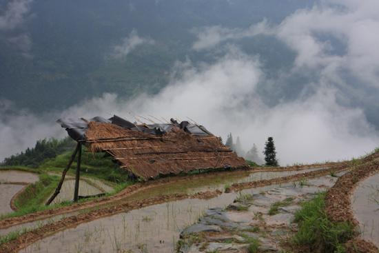 Longji Rijstterrassen van Longji bij Pingan<br><br> 1760_2363.jpg
