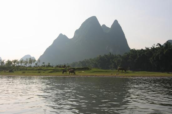 Yangshuo1 Boottocht op Li River - Yangshuo<br><br> 2010_2544.jpg