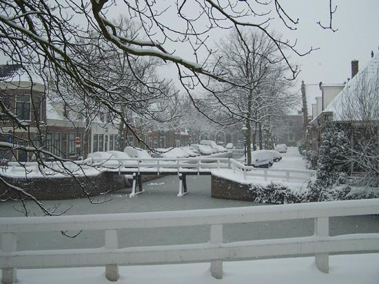Hoornsneeuw Oude Munniksveld 520_4758.jpg