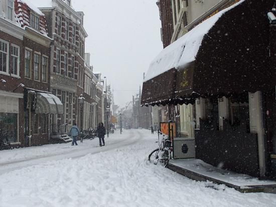 Hoornsneeuw Grote Oost 600_4781.jpg