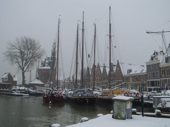 Hoornsneeuw Haven Hoorn 660_4790.jpg