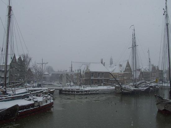 Hoornsneeuw Haven Hoorn 730_4803.jpg