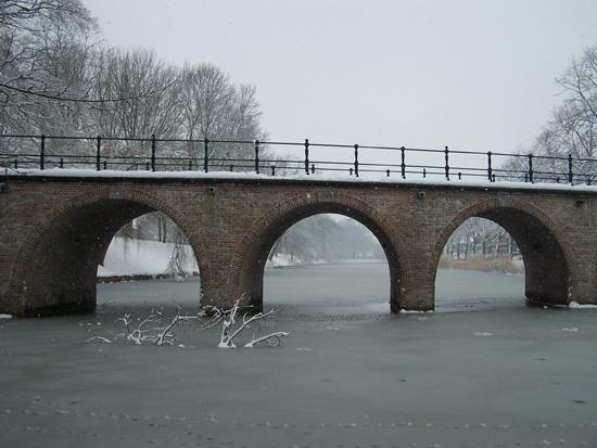 Hoornsneeuw Draafsingel 870_4841.jpg