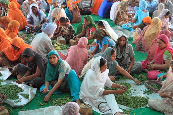 Amritsar1 Het massaal voorbereiden van de groenten<br><br> 0190-Amritsar-Gouden-Sikh-tempel-2487.jpg