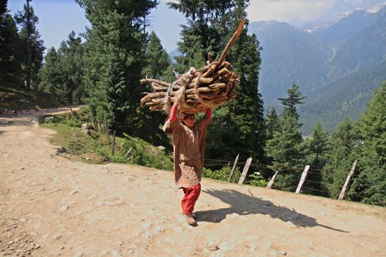 Pahalgam2 Pfff�Respect !<br><br> 0660-Pahalgam-Kashmir-2964.jpg