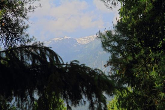 Pahalgam2 Onze eerste bergwandeling om alvast te wennen aan de hoogte<br><br> 0680-Pahalgam-Kashmir-2971.jpg