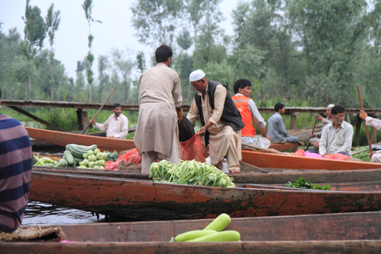 Srinagar1 De koop is gesloten <br><br> 0950-Nagin-Lake-Srinagar-Kashmir-3228.jpg