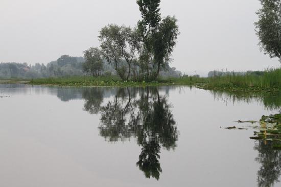 Srinagar1 Weer terug naar de woonboot <br><br> 0980-Nagin-Lake-Srinagar-Kashmir-3258.jpg
