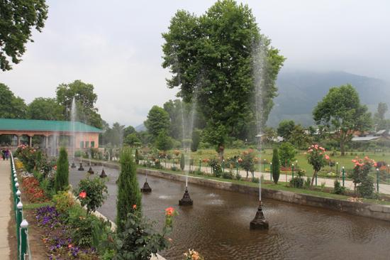 Srinagar2 Srinagar<br>Shaliman Bagh tuin<br><br> 1000-Shaliman-Bagh-tuin-Srinagar-3278.jpg