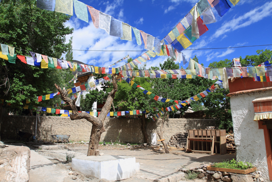 Alchi Alchi klooster<br>Kleurige gebedsvlaggen onder een blauwe hemel<br><br> 2390-Alchi-Ladakh-4317.jpg