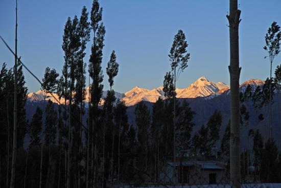 Thikse Vroeg opstaan vandaag zodat we een Puja konden bijwonen<br>De opkomende zon zet de bergtoppen in een rode gloed<br><br> 2680-Leh-Ladakh-4538.jpg