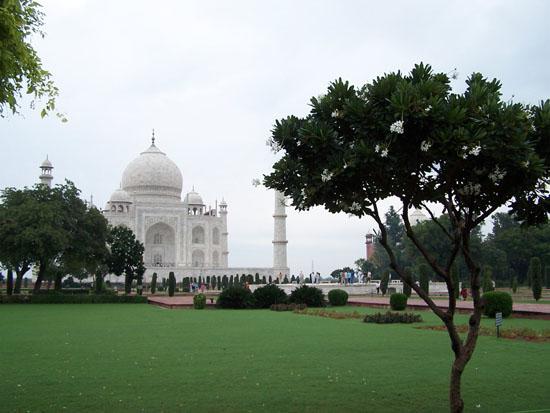 Agra  100_3925.jpg