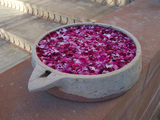 Pushkar  Bloemen-ingang-hotel-Pushkar_3516.jpg