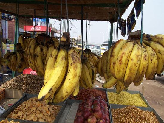 Jodhpur1  Jodhpur-streetlife_3034.jpg
