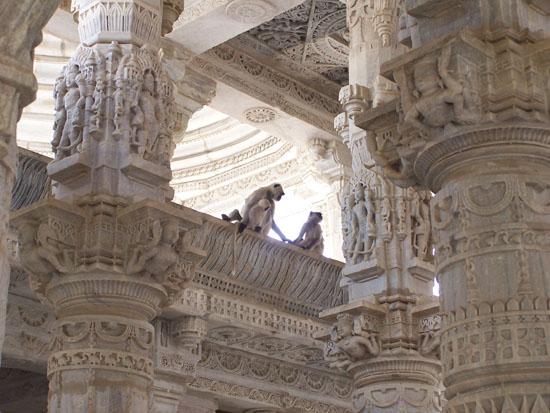 Udaipur Perfekte schutkleur Ranakpur-Adinath-Jain-Tempel_3308.jpg