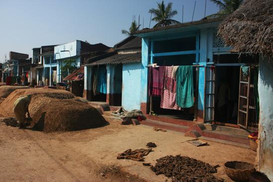 Adivasi-Tour1 Visiting the first Adivasi village in Orissa Bezoek aan het eerste Adivasi dorpje in Orissa 2110_4405.jpg