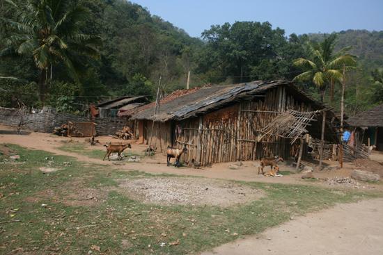 Adivasi-Tour2 One of the small and very poor Adivasi - villages Een van de vele kleine en zeer armoedige Adivasi - dorpjes 2230_4505.jpg