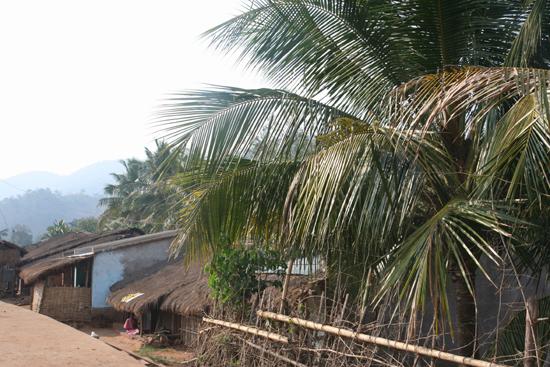 Adivasi-Tour2   2340_4572.jpg