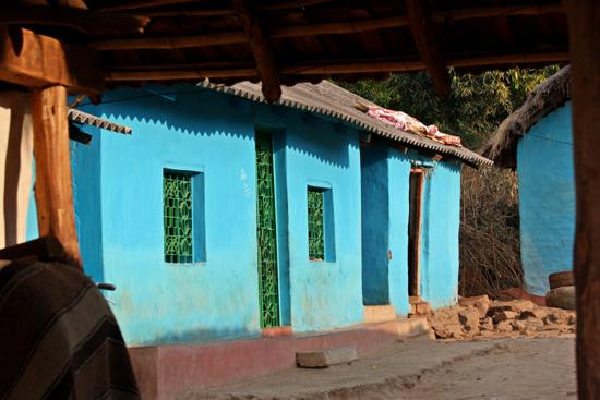 Adivasi-Tour4 Nice blue houses Schitterende blauwe huisjes 2690_4940.jpg