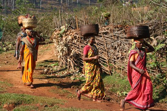 Adivasi-Tour5   2750_4988.jpg