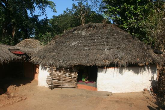 Adivasi-Tour6   2930_5156.jpg