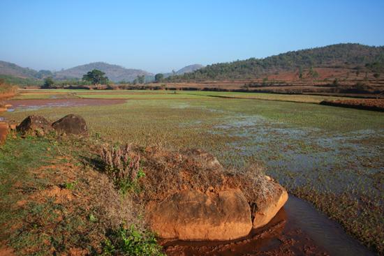 Adivasi-Tour8   3230_5430.jpg