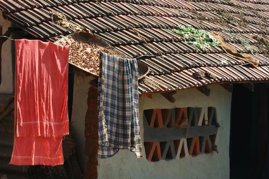 Adivasi-Tour8  Stilleven 3310_5509.jpg