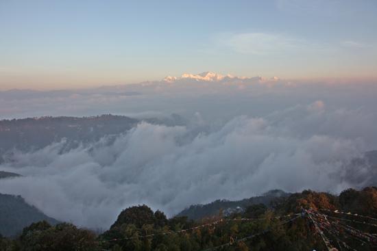 Darjeeling <br><br> 0070_3364.jpg