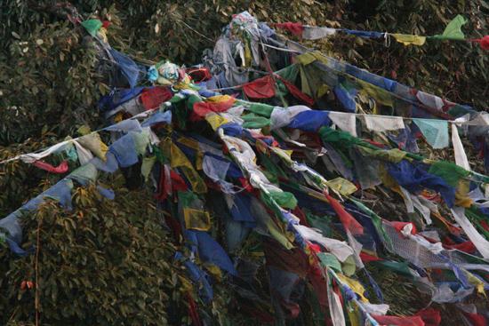 Darjeeling Gebedsvlaggen op Tiger Hill - Darjeeling<br><br> 0080_3347.jpg