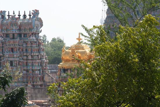 Madurai Het dak van de Golden Tempel IMG_6683.jpg