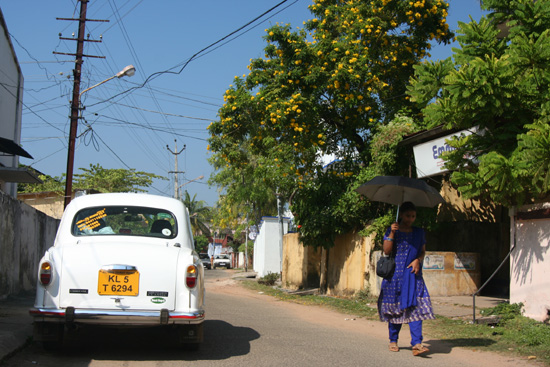 Cochin  IMG_7516.jpg