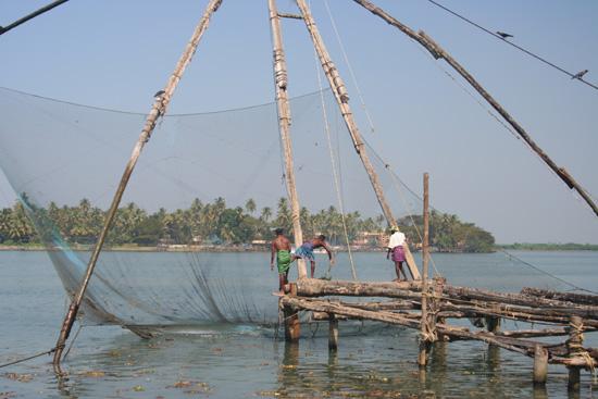 Cochin  IMG_7590.jpg