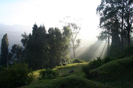 Ooty De laatste zonnestralen van de dag IMG_7765.jpg