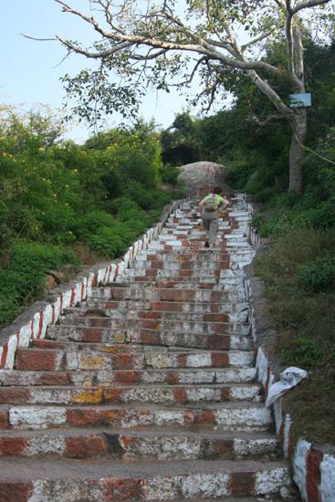 Mysore Na uitgebreid bezoek aan markt en paleis ook nog even  IMG_8190.jpg