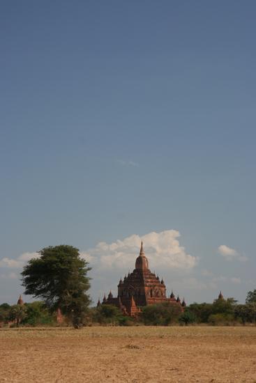 Bagan1 Bagan landschap   1910_6081.jpg
