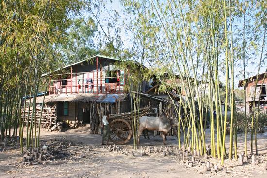 Inlemeer2 Inle meer - Kaung Daing   3730_7788.jpg