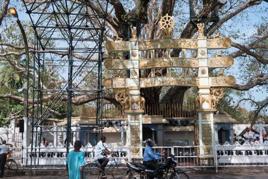 Kalutara Chaitya stupa-0030