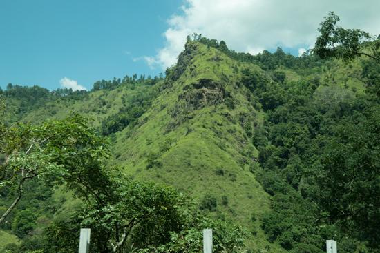 Onderweg naar Nuwara-Eliya-1780
