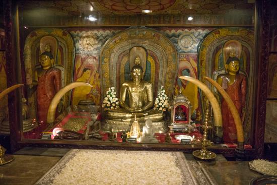 Kandy Tempel van de Tand-2380