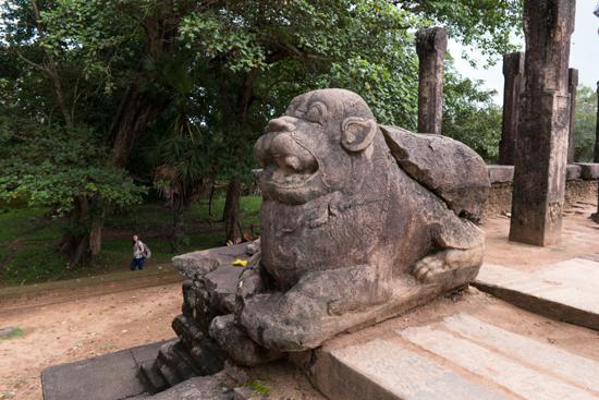 Polonnaruwa Ancient city-2970