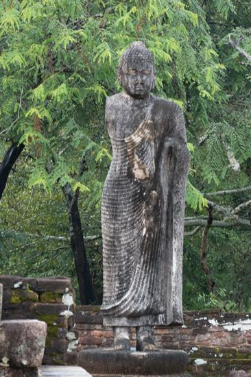 Polonnaruwa Ancient city-3050