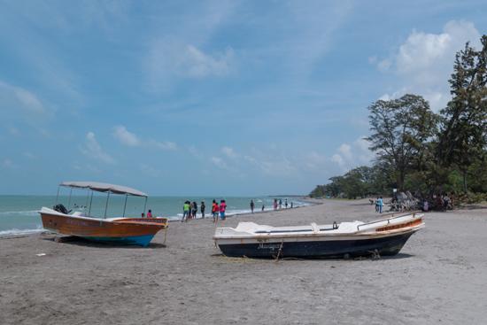 Jaffna Casuarine strand -3640