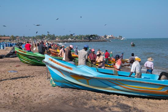 Negombo-4250