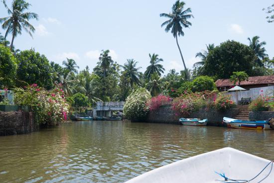 Negombo-4390